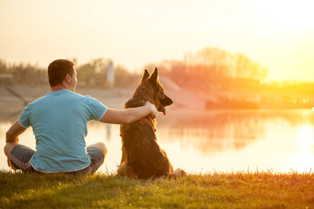 What Are the Benefits of an Emotional Support Animal?